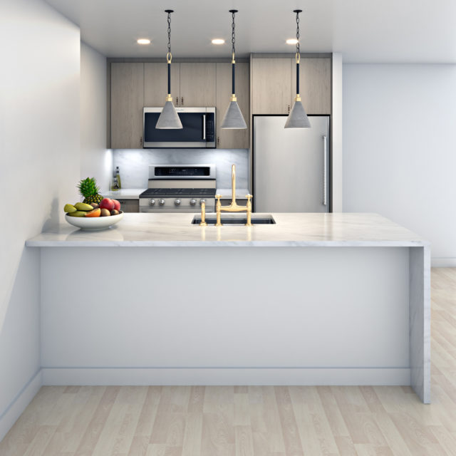 Interior Rendering - NYC Rental - Kitchen 1 - New York